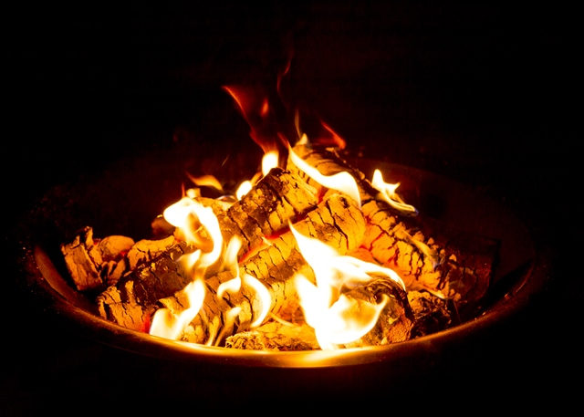 Fire Pit at National Forest Adventure Farm